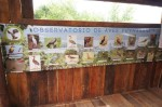 Inauguracin de observatorio de aves